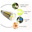 LED & Leuchtstoff-Lampen