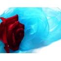 Schals & Tücher - Damenmode